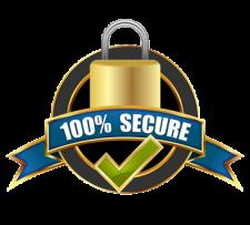 100-percent-secure-site